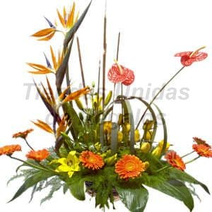 Servicio floral para empresas | Arreglos Corporativo 13 - Cod:CPT13