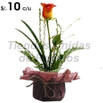 Dia de la Mujer - Arreglo de 1 Rosa x 6  - Whatsapp: 980-660044