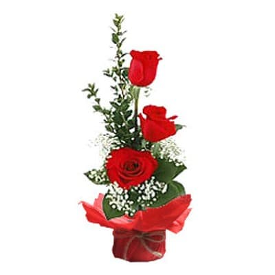 Dia de la Mujer - Arreglo de 3 Rosas x 4 - Codigo:DMJ04 - Detalles: Linda base de ceramica conteniendo tres rosas importada rojas incluye follaje y flores de estacion. Incluye dedicatoria. Cada una le sale a S/. 116 - - Para mayores informes llamenos al Telf: 225-5120 o 980-660044.