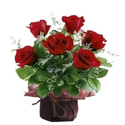 Ceramica 6Rosas - Codigo:DMJ34 - Detalles: Linda base de ceramica conteniendo media docena de rosas importada rojas incluye follaje y flores de estacion. Incluye dedicatoria.  - - Para mayores informes llamenos al Telf: 225-5120 o 980-660044.