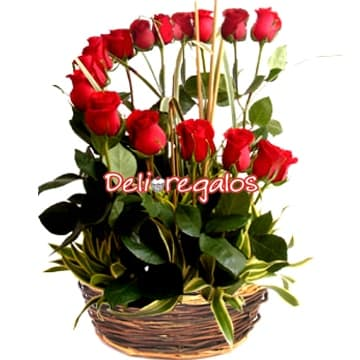 Rosas Importadas | Arreglo de 16 Rosas Importadas - Cod:ARL03