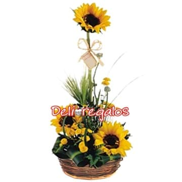 Mejorate Pronto con Girasoles - Whatsapp: 980-660044