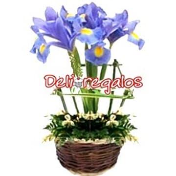 Tortas.com.pe - Jardin de Iris - Codigo:AGT39 - Detalles: en base de cer�mica conteniendo rustico cerco de madera y que en su interior tiene un ramillete de Iris, flores y follaje de estacion.  - - Para mayores informes llamenos al Telf: 225-5120 o 476-0753.