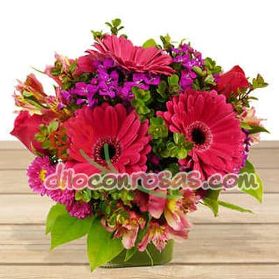 I-quiero.com - Flores 18 Ceramica - Codigo:ENL18 - Detalles: Lindo arreglo en base de ceramica con flores de estacion. El presente incluye una tarjeta de dedicatoria. - - Para mayores informes llamenos al Telf: 225-5120 o 476-0753.