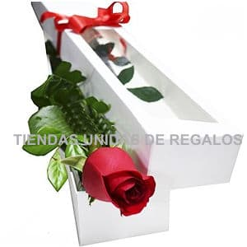 Caja con Rosa Importada - Cod:GBH13