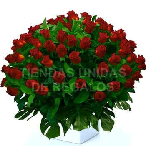 Arreglo de Rosas Gigante de 100 rosas - Cod:GCM04