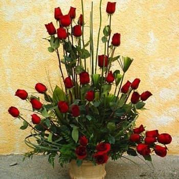 Desayunosperu.com - Dilo con 200 rosas - Codigo:AGP24 - Detalles: Base de ceramica, 200 rosas importadas segun imagen. altura del arreglo de 70cm. Incluye tarjeta de dedicatoria y follaje de estaci�n. - - Para mayores informes llamenos al Telf: 225-5120 o 476-0753.