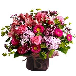 grameco.com - Detalle en una linda base de ceramica a base de flores y plantas de estancion, incluye tarjeta de dedicatoria. - Atendemos 24 horas. Llamar al 225-5120 o via Whatsapp: 980-660044