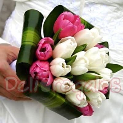 I-quiero.com - Bouquet de Tulipanes - Codigo:MAM05 - Detalles: Encantador Bouquet a base de 20 tulipanes en dos tonos de delicados colores, incluye flores de estacion. Este producto se debe ordenar con 48 horas utiles de anticipacion. - - Para mayores informes llamenos al Telf: 225-5120 o 476-0753.