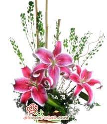 Arreglo Floral Navide�o - Cod:NAV05