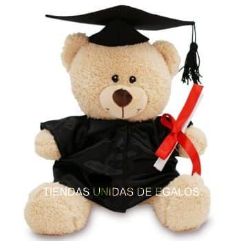 Oso Graduado | Oso Graduado 70cm | Peluche Graduado - Cod:OFX02