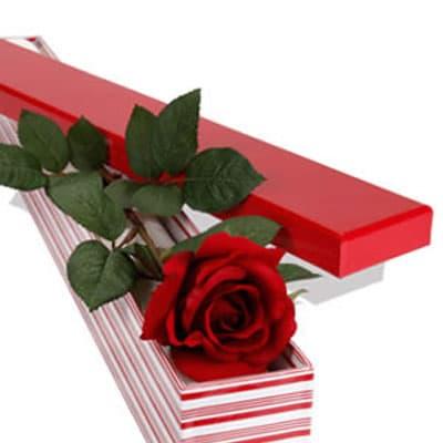Regalo para el 26 de Abril - Caja de Rosa - Cod:SEC05