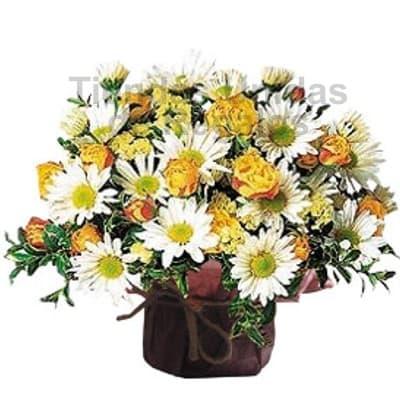 Arreglo floral en base ceramica 13 - Codigo:SET13 - Detalles: Peque�o detalle floral a base de flores de estaci�n con colores referenciales, incluye base cer�mica. El arreglo tiene un tama�o de 25cm. Incluye tarjeta de dedicatoria.  - - Para mayores informes llamenos al Telf: 225-5120 o 4760-753.
