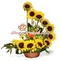 i-quiero.com - Arreglo de Girasoles - Codigo:VAT07 - Detalles: Arreglo floral conformado por 10 radiantes girasoles, acompañados de fino follaje de estacion.El arreglo viene en una fina base de mimbre. - - Para mayores informes llamenos al Telf: 225-5120 o 476-0753.