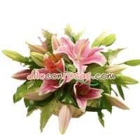 Arreglo con Liliums | Arreglos Florales - Cod:VAT13