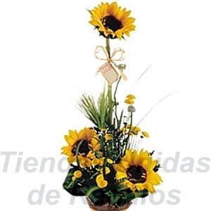 Girasoles Arreglo | Arreglo floral de Girasoles - Cod:XGR08