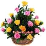 Florerias Peru | Rosas Importadas Amarillas y Rosadas | Rosas Importadas - Cod:ARL28