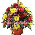 Arreglos de Rosas | Arreglo de Flores de Estacion | Arreglos Florales Lima - Cod:ENL23