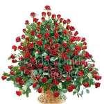 Arreglos de Flores Gigantes | 100 rosas   | Arreglos de Rosas - Cod:GCM02