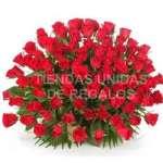 Arreglo con Rosas Gigante de 100 rosas  | Arreglos de Rosas - Cod:GCM06