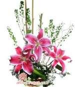 Arreglos Florales navideños | Arreglo Floral Navideño - Cod:NAV05